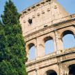 Roman Colosseum — Stock Photo #23279444