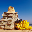 Stock Photo: Rucksack and bananas