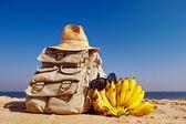 Rucksack and bananas — Stock Photo
