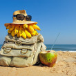 Backpack on beach — Stock Photo #23351006