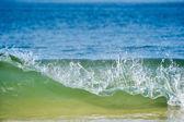 Aquatic Splashes — Stock fotografie