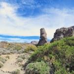 Rocky landscape — Stock Photo #24013165