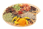 Palette of Spices — Stock Photo