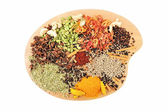Dish of Spices — Stock Photo
