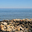 Stock Photo: Stony Beach