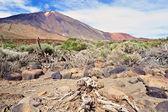 Vulkan-Übersicht — Stockfoto