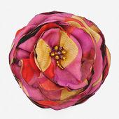 Kwiat jedwabiu — Zdjęcie stockowe