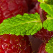 Raspberry and mint — Stock Photo