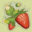 Red strawberries.Vector illustration  — Stock Vector