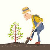Old man gardener plant a tree — Stock Vector