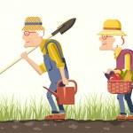 Elder couple gardeners — Vector de stock