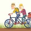 Old man and old woman drive by bike.Vector couple gardeners — Stok Vektör