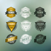 Retro Badge Collection — Stock Vector