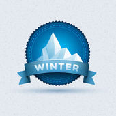 Winter badge — Stock Vector