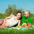Stock Photo: Young happy pregnant woman with young man lying on the grass hav