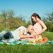 Stock Photo: Married pregnant couple at the park having picnic