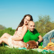 Stock Photo: Married pregnant couple with dog at the picnic