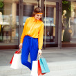 Full lenght portrait of a young woman holding shopping bags stan — Stock Photo #26146133