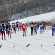Ski races. — Stock Photo