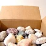 Sea pebbles in a box. — Stock Photo
