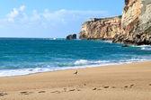 Oceano atlântico praia durante o inverno — Foto Stock