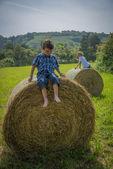 Boys on round hay bales — Stock Photo