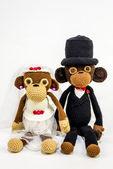 Düğün maymunlar — Stok fotoğraf