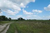 Road near field — Stock Photo