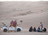 A group of bedouin men and their vehicles — Stock Photo