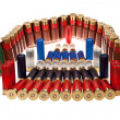 Hunting ammunition — Stock Photo #23851449