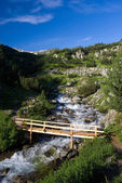 Bridge over small river in the Pirin mountains — Stock Photo