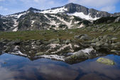 Mountain reflecting in pond — Stock Photo
