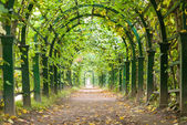 Garden tunnel — Stock Photo
