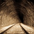 Railway Tunnel — Stock Photo #23792311