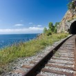 Stock Photo: Trans Siberian railway