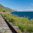 Trans Siberian railway - Stock Photo