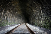 Railway Tunnel — Stock Photo