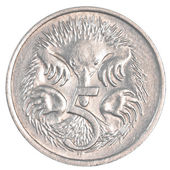 Five australian cents coin — Stock Photo