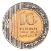 10 Israeli New Sheqel coin — Stock Photo