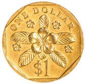 Eine singapur-dollar-münze — Stockfoto