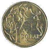 One Australian dollar coin — Stock Photo
