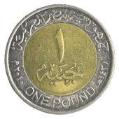 One Egyptian pound coin — Stock Photo