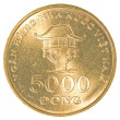 5000 vietnamese dong coin — Stock Photo