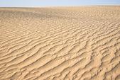 Sandy dune — Stockfoto