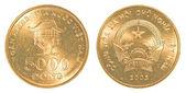 5000 vietnamese dong coin — Stock Photo