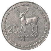 20 Georgian tetri coin — Stock Photo