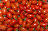 Red tomatoes at the market — Stock Photo