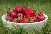 Bowl full of strawberries on a grass — Stock Photo