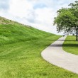 Stock Photo: Paved Path up Hill