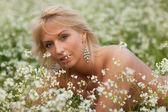 Prado primavera — Fotografia Stock